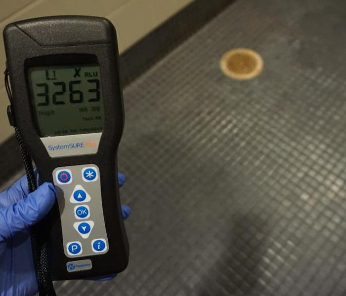 Contamination Level Test on Gym's Bathroom Shower in Dallas, Texas