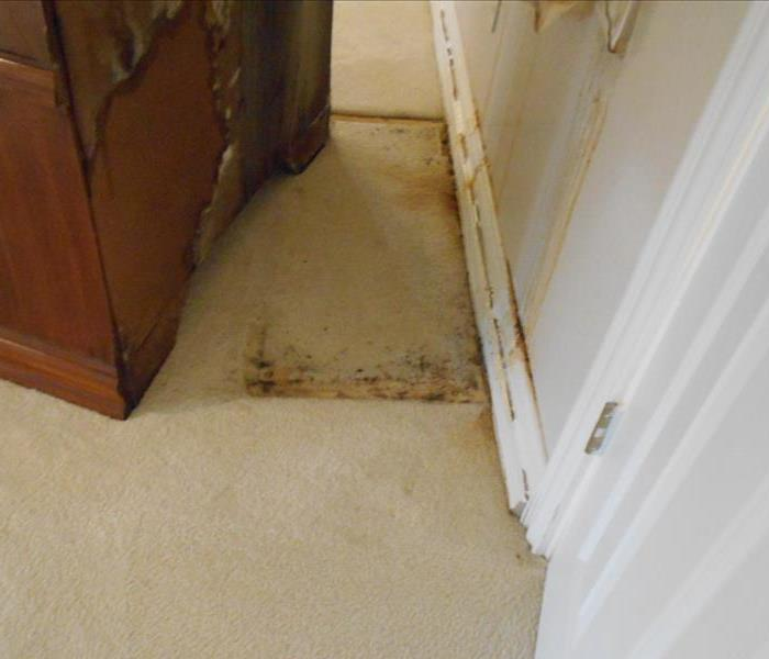 Mold Growth Behind Cabinet in Waxahachie, Texas Home