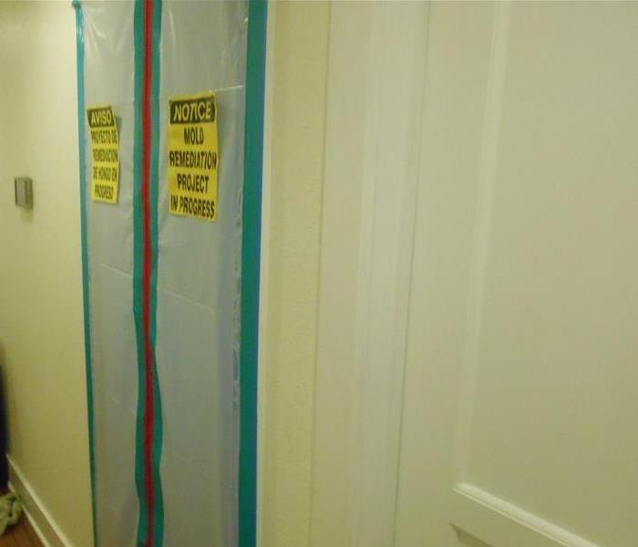 Mold Remediation in Plano, Texas