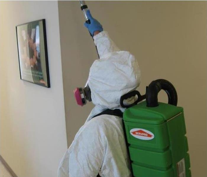 Mold Remediation Mold Remediation Process FAQ