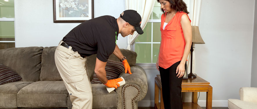 Irving, TX carpet upholstery cleaning